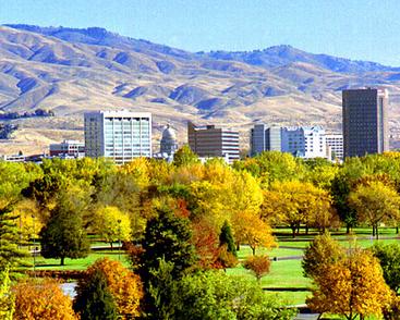 Boise_W_-Trees