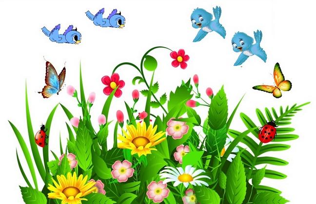 Birds_and_Butterflies